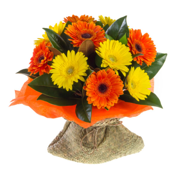 yellow and orange gerberas