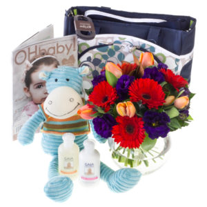 diaper bag, stuffed animal, flowers, baby shampoo
